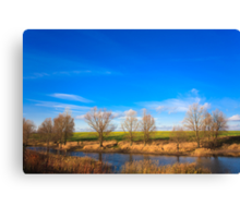 Autumn landscape in sunny day Canvas Print