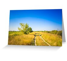 Dirty Rural Road In Countryside Greeting Card