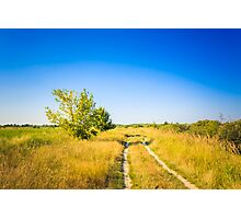 Dirty Rural Road In Countryside Photographic Print