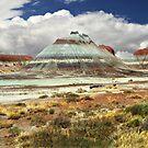Beautiful Arizona by JaninesWorld