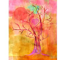 All Creation Sings Photographic Print