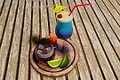 Summer Cocktails by Liam Liberty