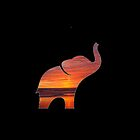 Elephant Sunset by Pariss93