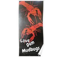 Love Dem Mudbugs Poster