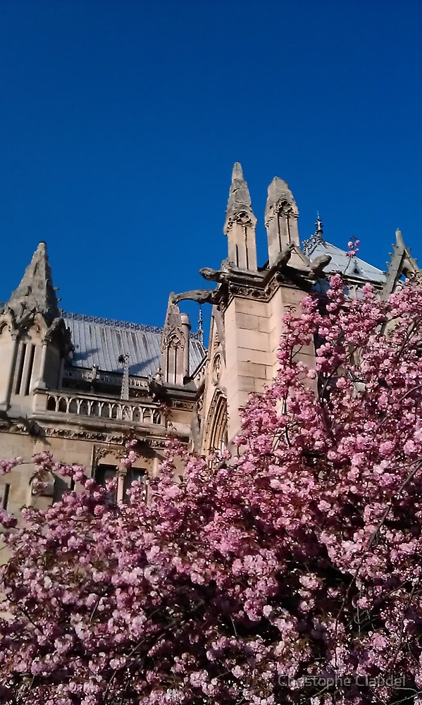 Notre Dame at Spring by Christophe Claudel