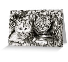 Baby Cats in the Garden Greeting Card