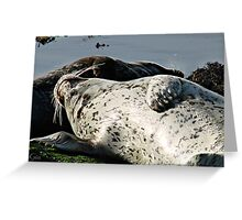 """""""This Is The Life"""" ! Greeting Card"""