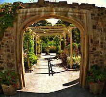 Mount Edgcumbe Formal Gardens Fisheye by CHINOIMAGES