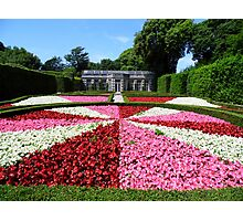 Mount Edgcumbe Flower Display Formal Gardens  - French Garden Photographic Print