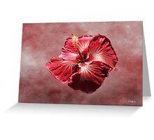 Petticoat Greeting Card