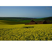 Ruin in a field of rapeseed Photographic Print