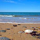 Cape Cod National Seashore Beach Panorama by Christopher Seufert