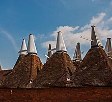 Oast Houses by eddiechui