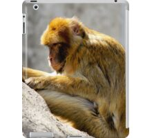 Barbary Ape iPad Case/Skin