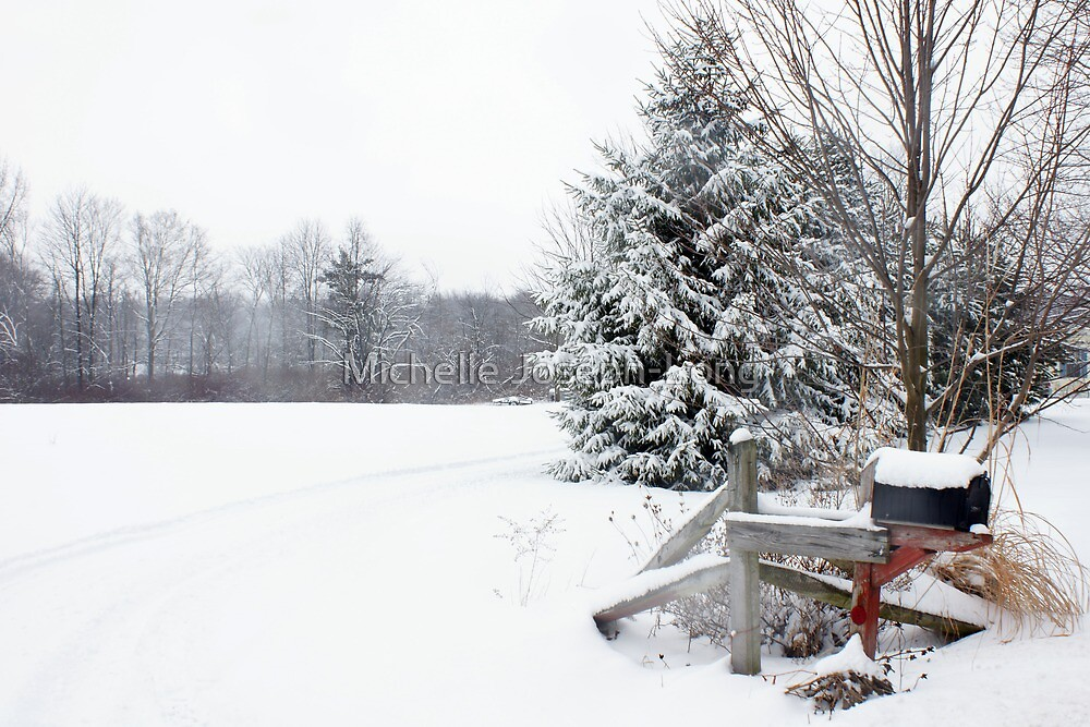Winter Mail Delivery by Michelle Joseph-Long