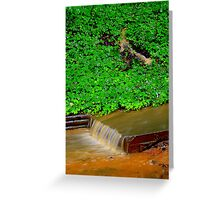 When The Rains Came Greeting Card