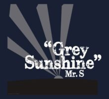 "Mr. S ""Grey Sunshine"" by Keith Miller"