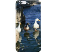 Three Little Ducks iPhone Case/Skin