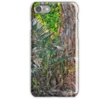 Trees in the rainforest iPhone Case/Skin
