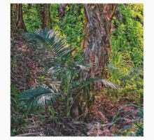 Trees in the rainforest One Piece - Short Sleeve