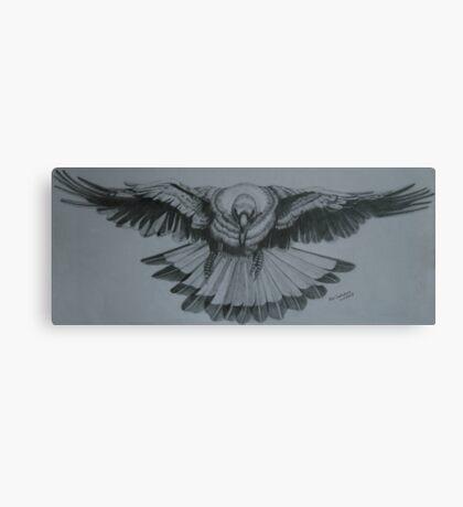 Magpie - Pencil Sketch Canvas Print