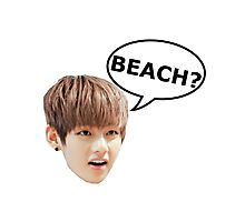 V BTS BEACH Photographic Print