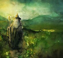 Gandalf The Grey by Farbenfrei