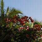 Palm Trees and Tropical Flowers by Georgia Mizuleva
