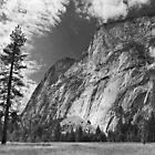 Yosemite by Roger McNally