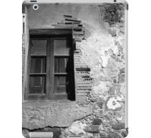 Weathered Plaster iPad Case/Skin