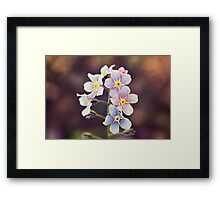 Nobody's Forgetting Framed Print