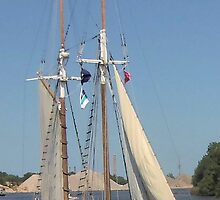 Madeline - Bay City (Michigan) Tall Ships - 2013 by Francis LaLonde