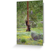 Grizzly Bear Cubs on Pole Greeting Card