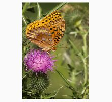 Fritillary On Thistle 2013-3 Unisex T-Shirt
