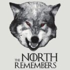The North Remembers  3 by lab80