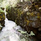 Rogue River Gorge, Oregon by cratermoon