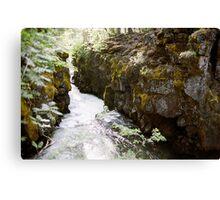 Rogue River Gorge, Oregon Canvas Print