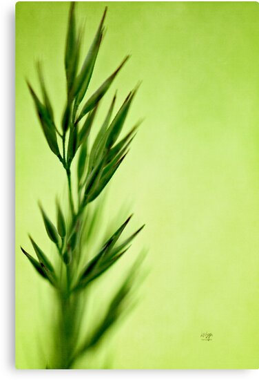 Green on Green - iPhone Case by Lois  Bryan