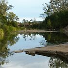 Medway Creek ,Bogantungan Qld.  by Virginia McGowan