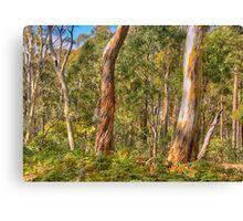 Survivors - Coolah Tops National Park - The HDR Experience Canvas Print