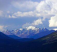 Mountain Beauty by Harry Oldmeadow