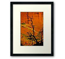 Shadows of Kata Tjuta Framed Print
