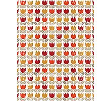 red tulips in rows Photographic Print