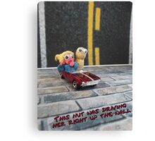 This nut was driving her right up the wall Canvas Print