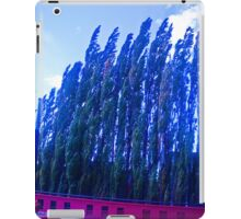 Winds from the south. iPad Case/Skin