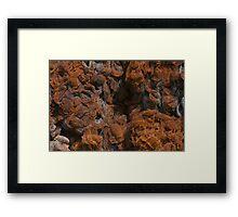 Rusty Metal Net Texture Framed Print