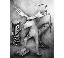 Books. Photographic Print