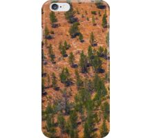 Pines on the ABC Range iPhone Case/Skin