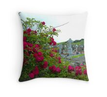 Irish Cemetary Throw Pillow