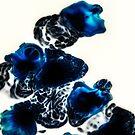 Liquid Blue by Amanda McConnell